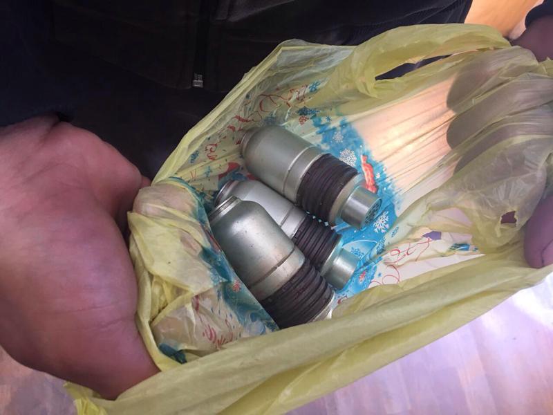 Четвероногий Дик обнаружил «взрывного» покровчанина, фото-3