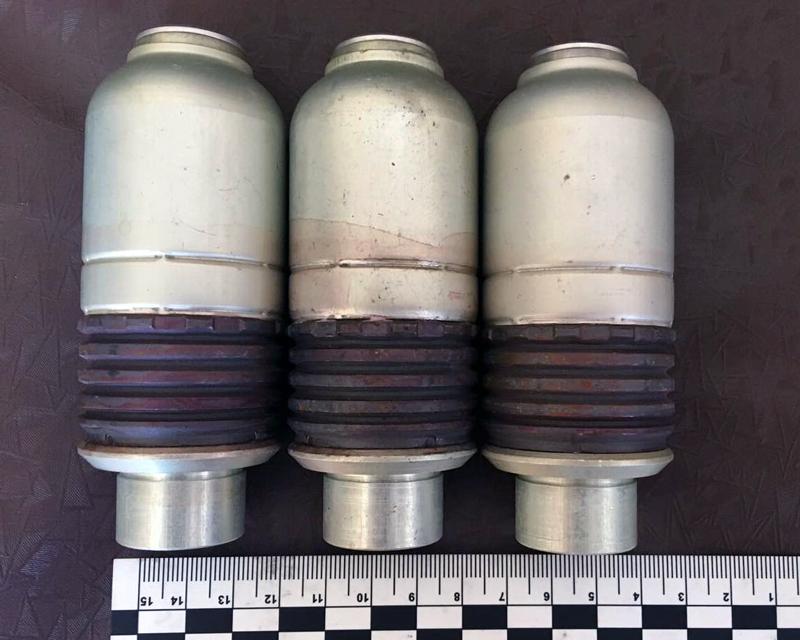 Четвероногий Дик обнаружил «взрывного» покровчанина, фото-4