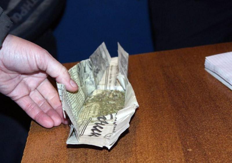 Покровские правоохранители задокументировали факт хранения каннабиса, фото-1