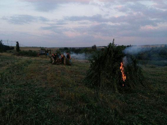 За півроку поліцейські припинили на Донеччині понад 1400 наркозлочинів , фото-4