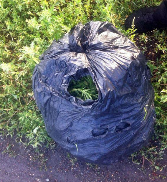 У жителей Покровска и Мирнограда в очередной раз изъяли наркотические вещества, фото-3