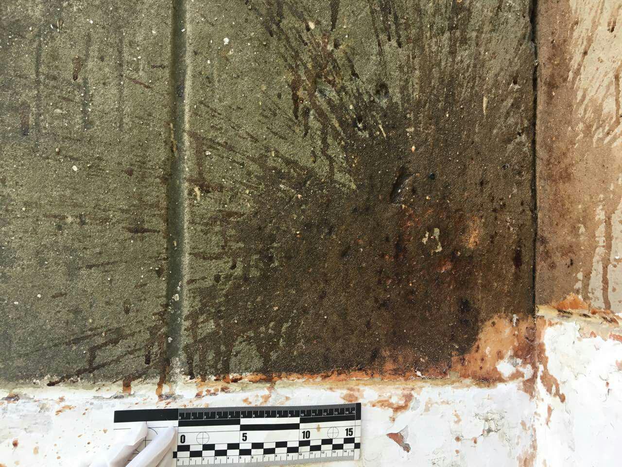 По факту повреждения окон в Покровской ОШ № 4 открыто уголовное производство, фото-3