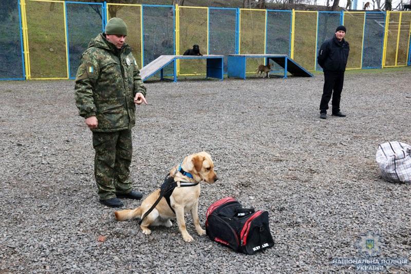 В кінологічному центрі поліції Донеччини відбувся перший випуск сертифікованих «детективів» (ВІДЕО), фото-7