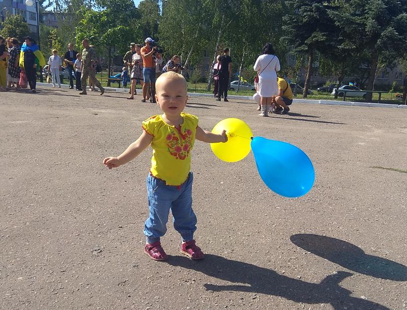 Як у Покровську відзначили 27-ї річницю незалежності України, фото-6
