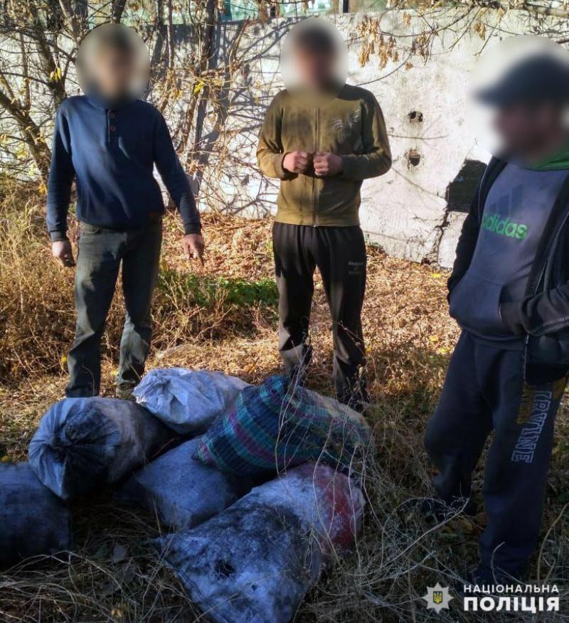 Покровські правоохоронці затримали розкрадача вугілля, фото-1