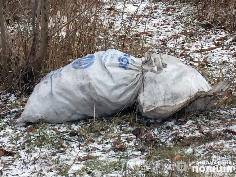 Протягом святкових днів співробітниками поліції Покровська попереджено три спроби крадіжки вугілля, фото-1