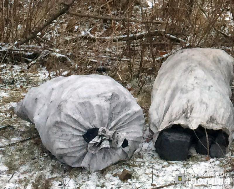 Протягом святкових днів співробітниками поліції Покровська попереджено три спроби крадіжки вугілля, фото-2