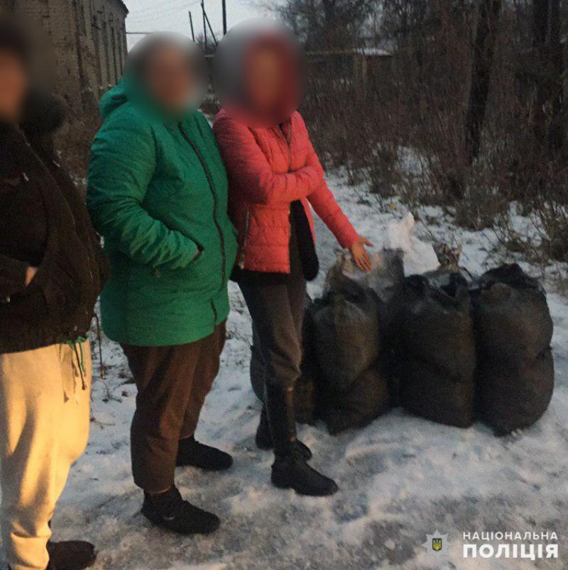 Протягом святкових днів співробітниками поліції Покровська попереджено три спроби крадіжки вугілля, фото-4
