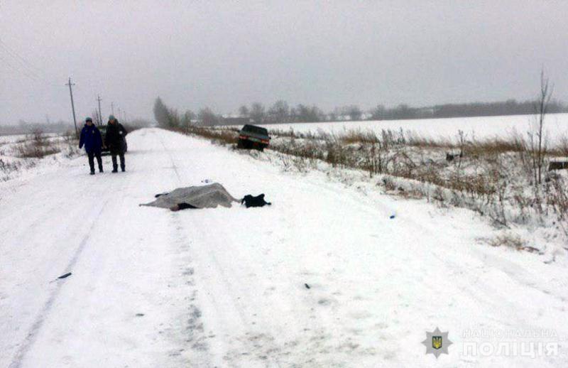 По факту ДТП в Покровском районе возбуждено уголовное дело, фото-1