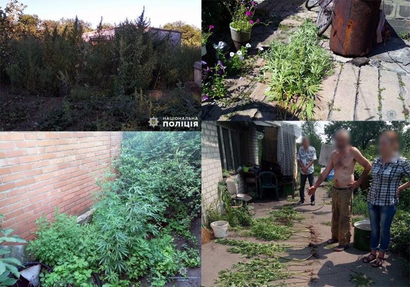 Минулого року Правоохоронці Покровської оперативної зони вилучили більше семи кілограмів наркотичних речовин, фото-6