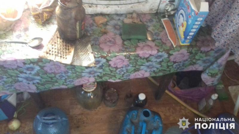 В Добропіллі виявлено горе-матір, яка неналежно доглядала за своїми доньками, фото-3