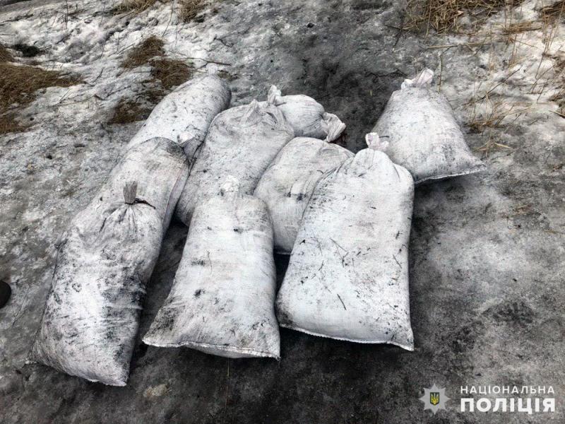 Правоохоронцями Покровська попереджені дві крадіжки вугілля з вагонів, фото-2