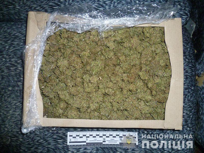 З початку року поліція Донеччини вилучила наркотиків на 400 тисяч гривень, фото-4