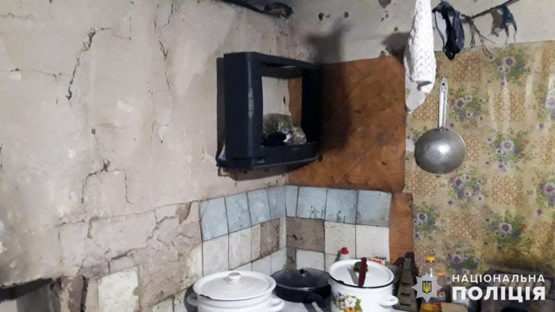 Покровські поліцейські перевірили підоблікові родини у Новоекономічному , фото-8