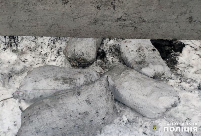 Покровські поліцейські попередили спробу викрадення вугілля, фото-1