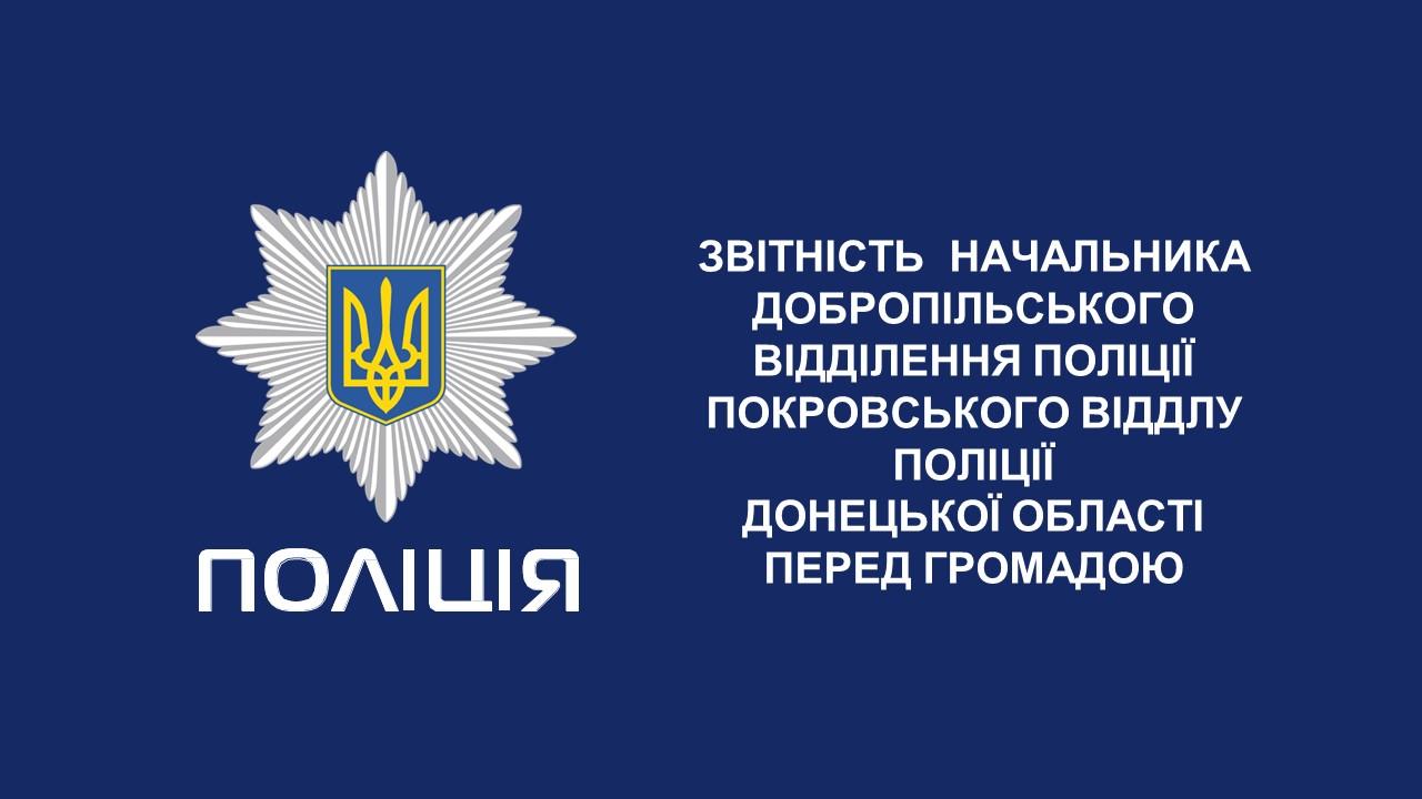 Звіт керівника поліції Добропілля перед населенням за 2018 рік, фото-1