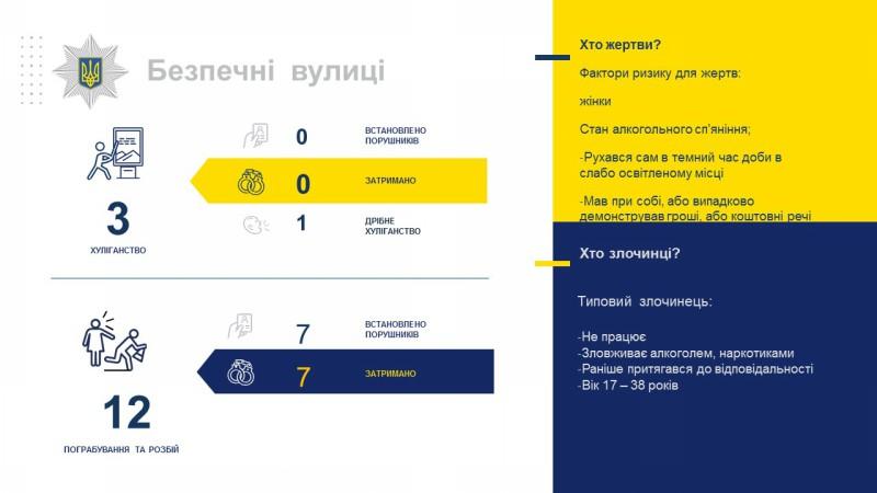 Звіт начальника поліції Покровська перед громадою за 4 місяця 2019 року, фото-13