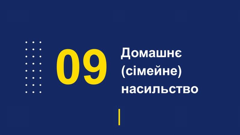 Звіт начальника поліції Покровська перед громадою за 4 місяця 2019 року, фото-21