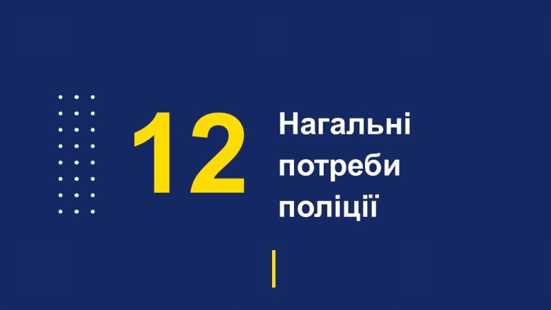 Звіт начальника поліції Покровська перед громадою за 4 місяця 2019 року, фото-28